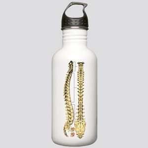 AP-Lat Spine Water Bottle