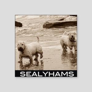 "sealyhams Square Sticker 3"" x 3"""