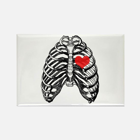 X-ray Heart Rectangle Magnet