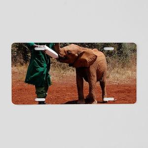 Baby Elephant2 Aluminum License Plate