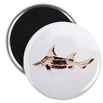 Caribbean Roughshark shark Magnets