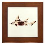 Caribbean Roughshark shark Framed Tile