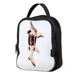 Caribbean Roughshark shark c Neoprene Lunch Bag