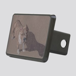 Bezel Rectangular Hitch Cover