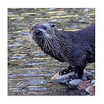 River Otter Tile Coaster
