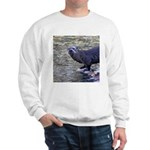 River Otter Sweatshirt
