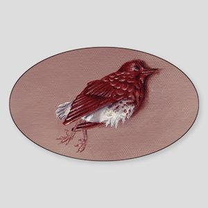 20101103001 Sticker (Oval)