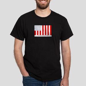 US Civil Peacetime Flag T-Shirt