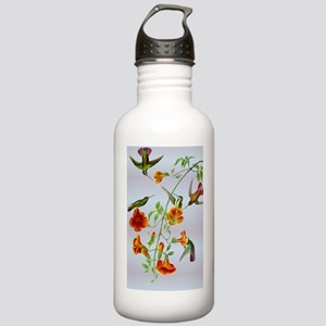 Hummingbirds Stainless Water Bottle 1.0L