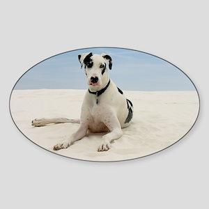GD beach framed print Sticker (Oval)