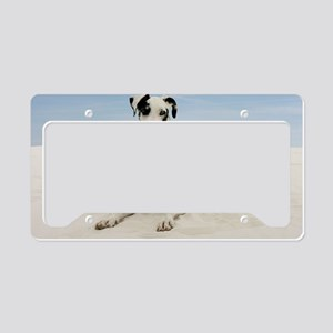 GD beach framed print License Plate Holder