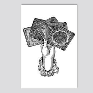 Fortune's Hand Postcards (Package of 8)