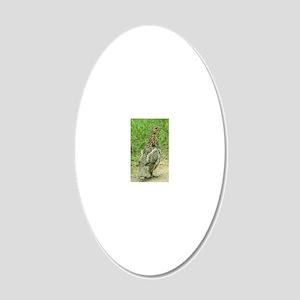 RG2.41x4.42 20x12 Oval Wall Decal