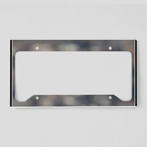 x14b  Highflight License Plate Holder