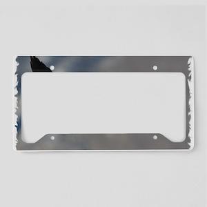 x14W  tipper License Plate Holder