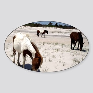 Assateague ponies Sticker (Oval)