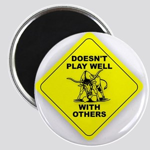 PLAY_WELL Magnet