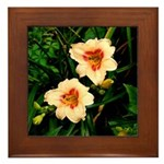 Rainy Daylily Framed Tile