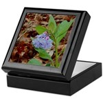 Bluebells Keepsake Box