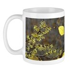 Witch Hazel Mug