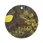 Witch Hazel Ornament (Round)
