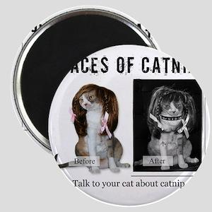Faces of Catnip 2 Magnet