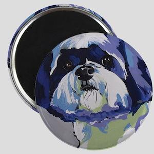 ShihTzu - Ringo s6 Magnets