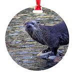 River Otter Ornament