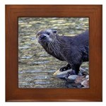 River Otter Framed Tile