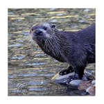 River Otter Tile Coaster