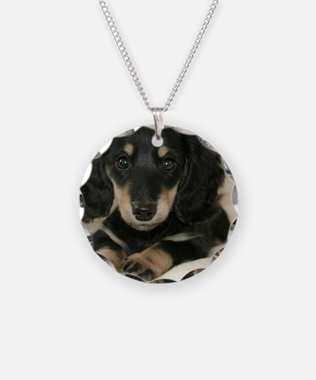 long hair black doxie 16x12 Necklace