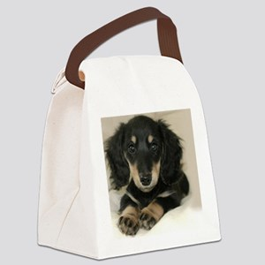 long hair black doxie 16x12 Canvas Lunch Bag