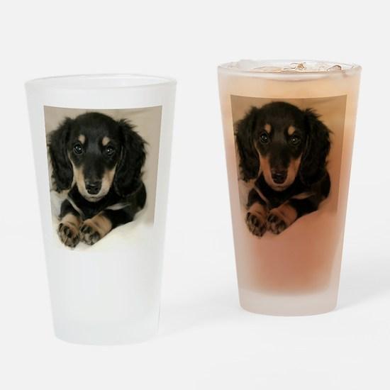 long hair black doxie 16x12 Drinking Glass
