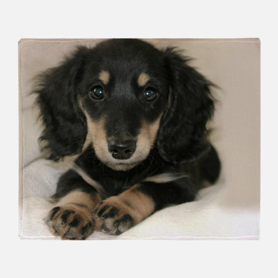 long hair black doxie 16x12 Throw Blanket
