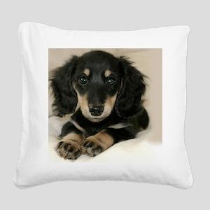 long hair black doxie 16x12 Square Canvas Pillow