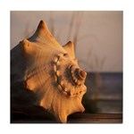 Conch Shell At Sunset Tile Coaster / Spoon Rest