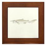 Goblin Shark Framed Tile