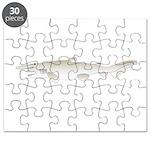 Goblin Shark Puzzle