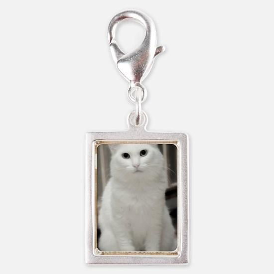 2-DSC_3989 B Silver Portrait Charm