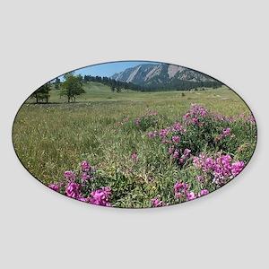 Chautauqua Park Boulder Colorado Ph Sticker (Oval)
