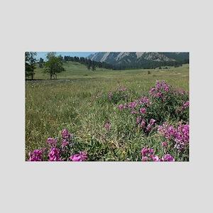 Chautauqua Park Boulder Colorado  Rectangle Magnet