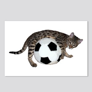 Cat Soccer - Postcards (Package Of 8)