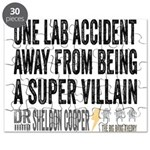 Lab Accident Super Villain Puzzle