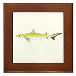 Atlantic Weasel Shark Framed Tile