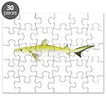 Atlantic Weasel Shark Puzzle