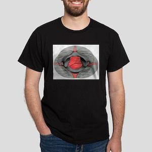 Atlas 35 T-Shirt