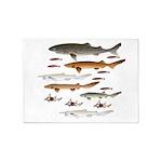 Deep Sea Sharks School 2 c 5'x7'Area Rug