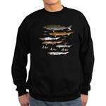Deep Sea Sharks School 2 c Sweatshirt