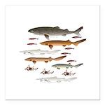 Deep Sea Sharks school 2 Square Car Magnet 3