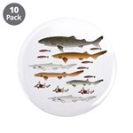 Deep Sea Sharks School 2 3.5&Quot; Button (10 Pack